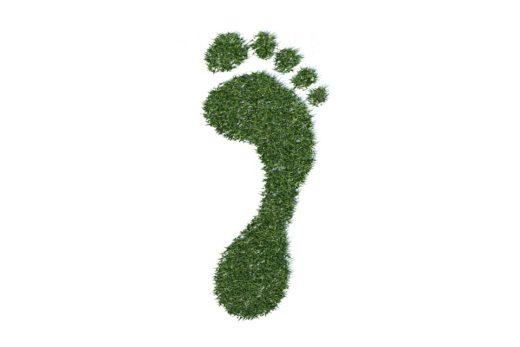 Der ökologische Fußabdruck