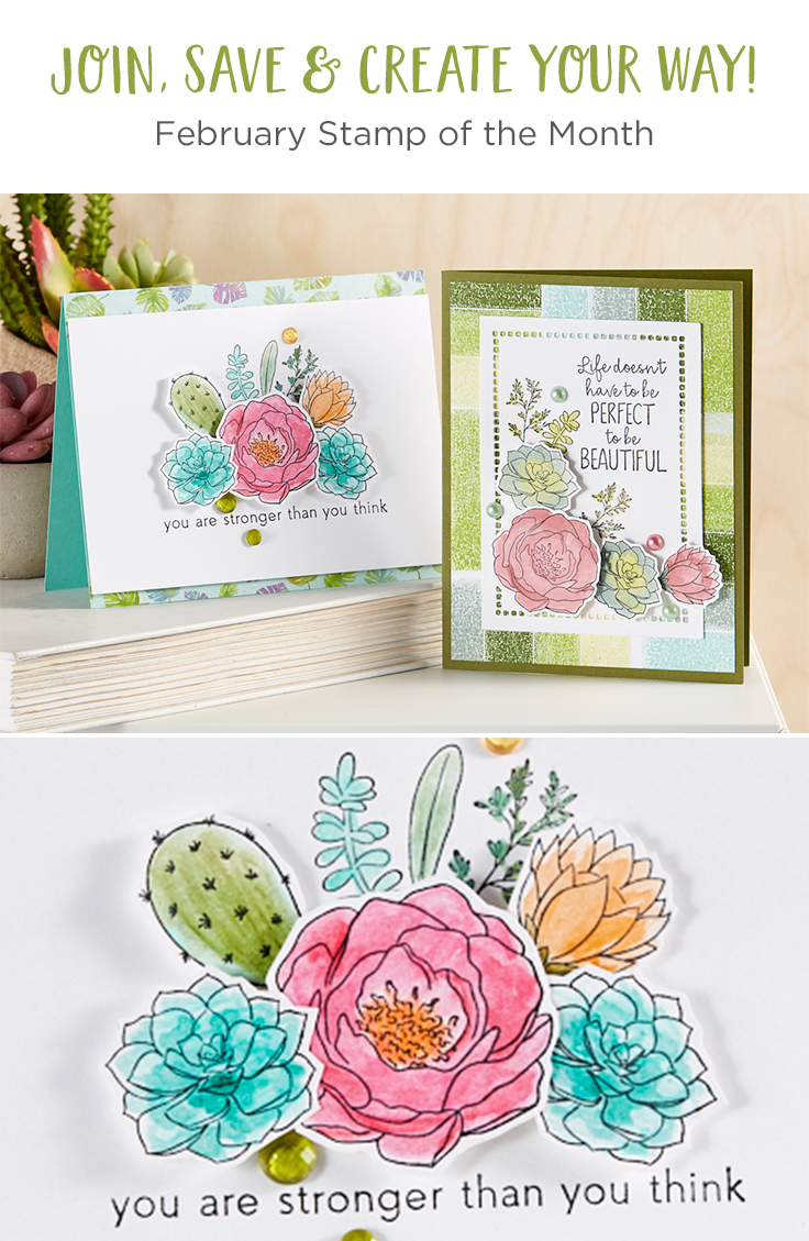 FSJ February 2020 Stamp of the Month is Here - Spring in the Desert