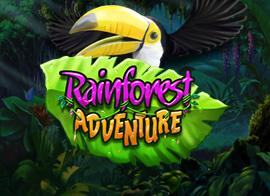 Rainforest Adventure