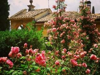 I Giorni delle Rose, grande successo a Villa Fidelia
