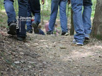 Cannara, c'è anche la prima 'Cipolla walking' nella Festa