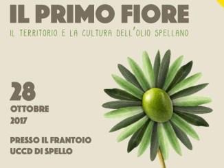 Il primo fiore, territorio e la cultura dell'olio spellano al centro dell'evento