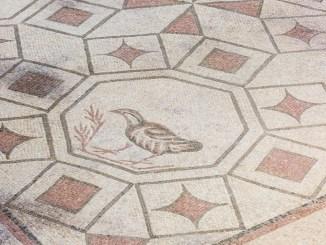La Villa dei Mosaici di Spello festeggia il primo anno di attività
