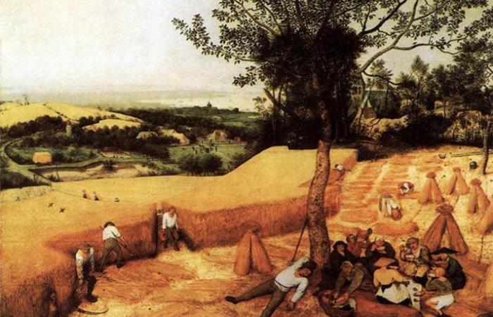 Grani antichi e grani moderni (Prima Parte)