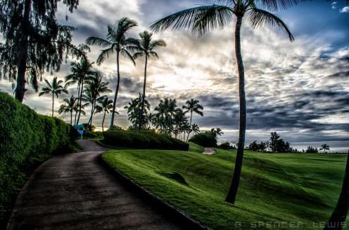 Kauai Golf
