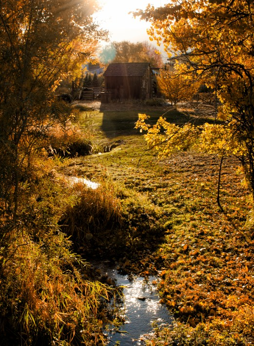 Twilight Creek