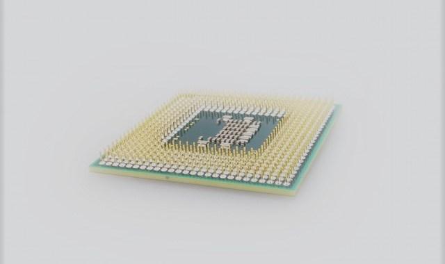 Employee Microchips