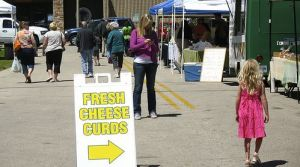 3 Ways Cheese Curds Can Teach You About Social Media