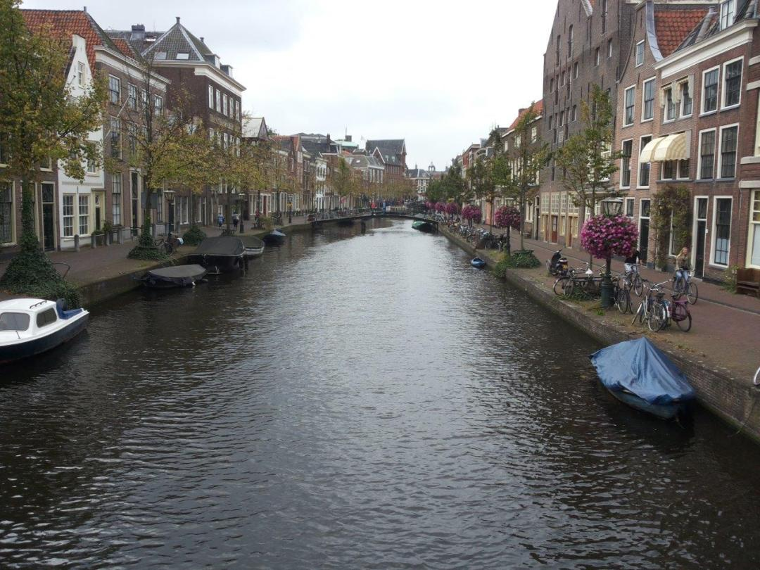 17th-century houses in the centre of Leiden