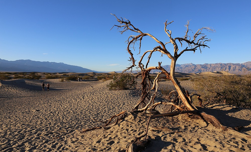 Top camping spots in California: Death Valley National Park