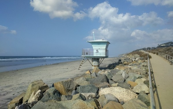 what_not_to_miss_san_diego_torrey_pines_beach