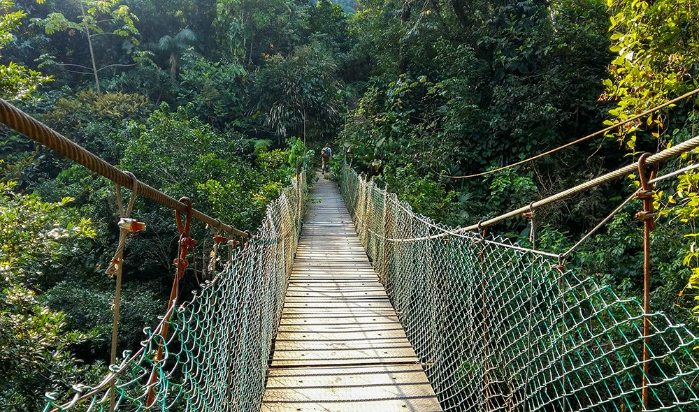 Things You Should Know Before Hiking to The Lost City in Colombia