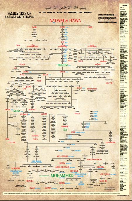Family Tree of Aadam and Hawa