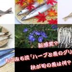 新感覚?もこみち流「ハーブと魚のグリル」とは?秋が旬の魚は何?