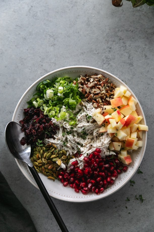 Overhead shot of a bowl of chicken salad topped with piles of chopped apple, pomegranate arils, toasted pepitas, dried cranberries, scallions, and toasted pecans