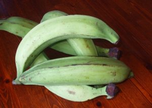 unriped plantains