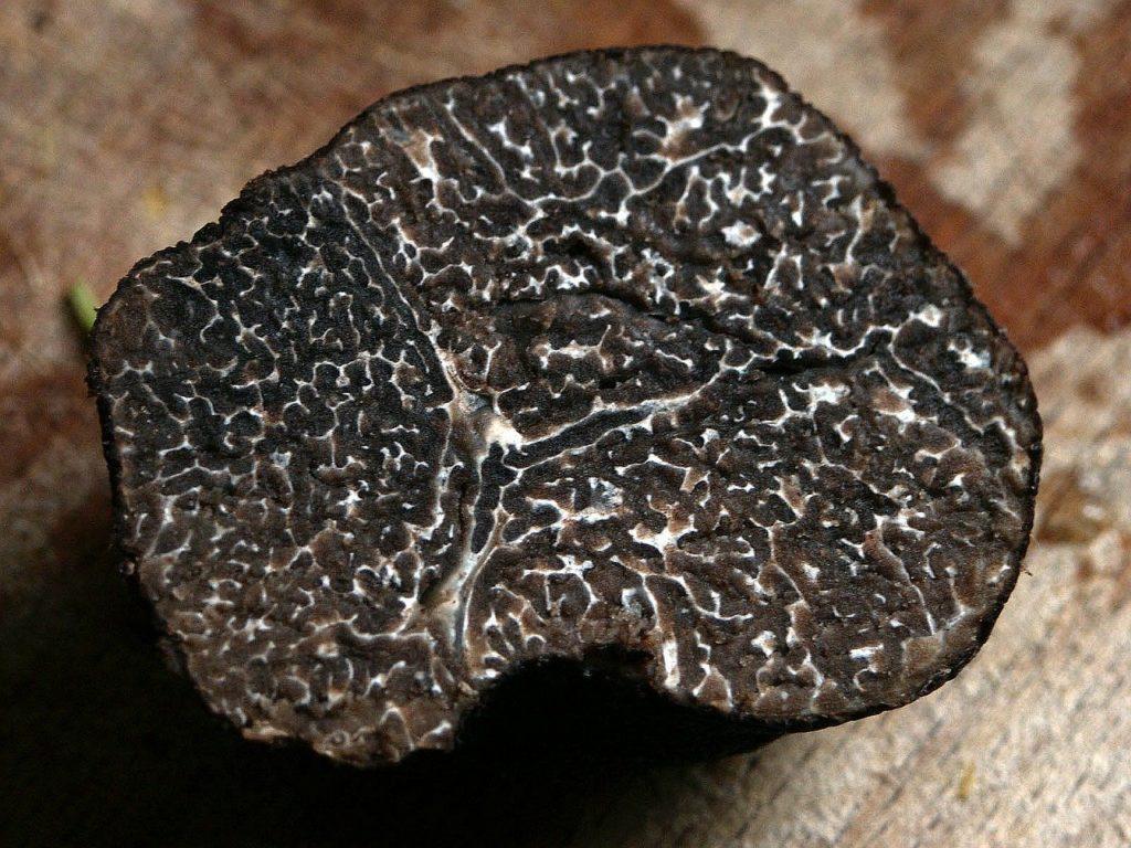 immagine di tartufo nero pregiato tagliato a metà