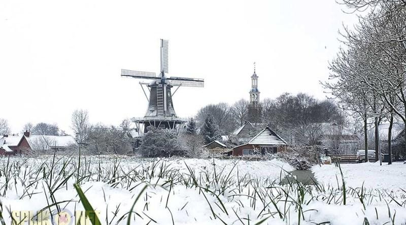 skyline (foto Janneke Veldman-Drint)