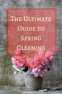A step-by-step guide on decluttering your entire house and then making it shine again!