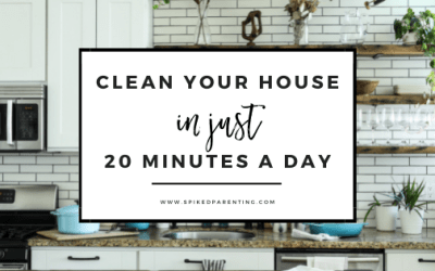 Cleaning Hacks: 20 Minutes to a Cleaner House
