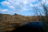 2008-03-22_20-38-42