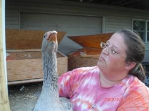 goose smackdown
