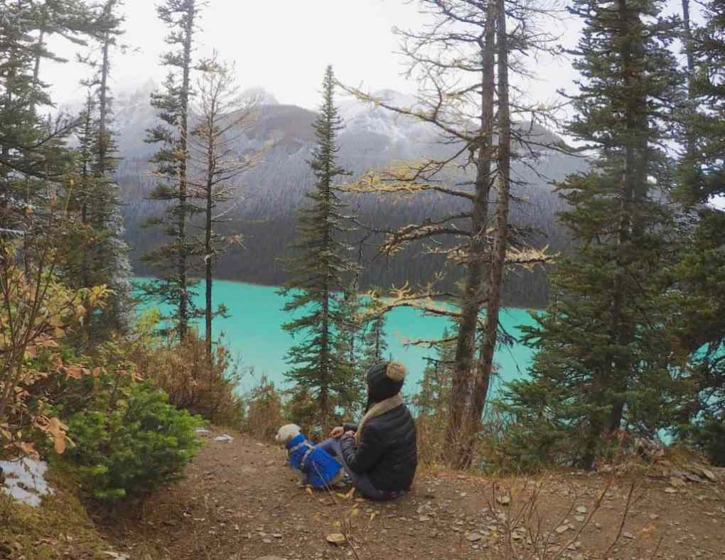 girl and dog sitting at fairview lookout at lake louise in banff national park