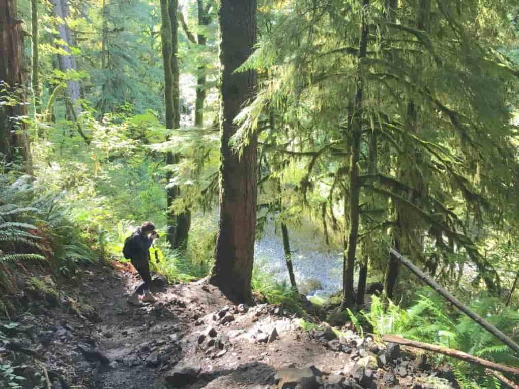 girl walking down abiqua falls trail through mossy trees
