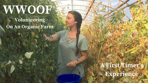 WWOOFing: Work Exchange on an Organic Farm in Oregon - Spin