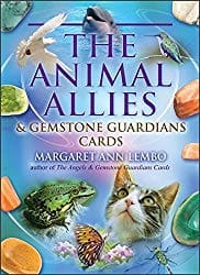 Cover of Box for Animal Allies