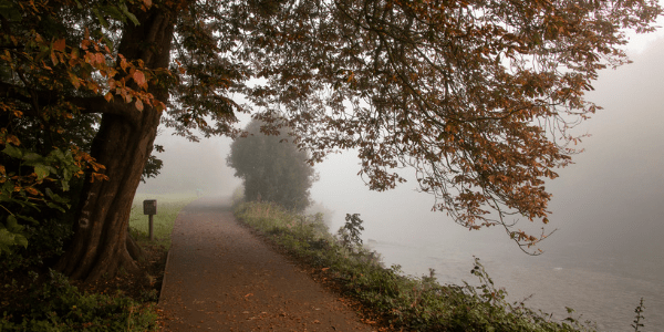 Autumn mist, photo by Jeremy Segrott