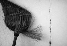 Broom by Rudolf Vlček (flickr)
