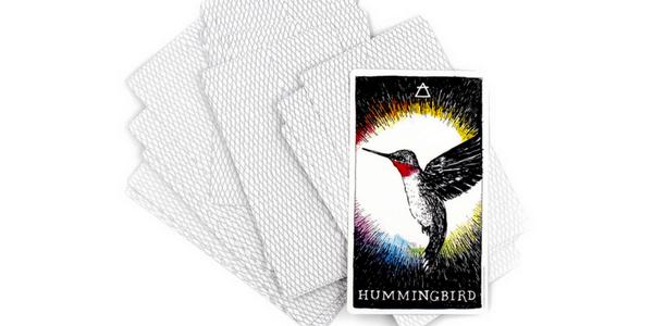 Detail of Hummingbird, from The Wild Unknown_ Animal Spirit, by Kim Krans