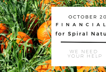 Financials for Spiral Nature October 2018