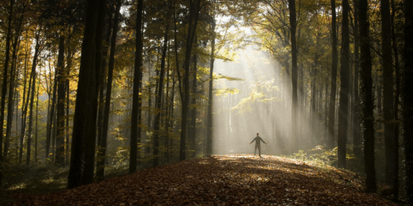 Human in the woods, photo by Martin Gommel