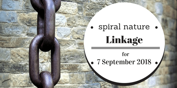 Spiral Nature Linkage for Friday, 7 September 2018