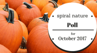 Spiral Nature Poll for October 2017