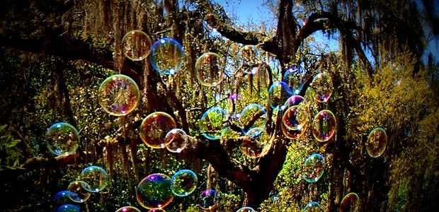 Bubble tree, photo by George
