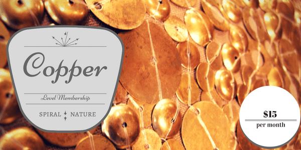 Copper Level Membership