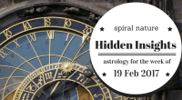 Hidden Insights: 19 February 2017