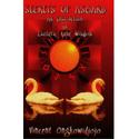 Vincent Ongkowidjojo - Secrets of Asgard