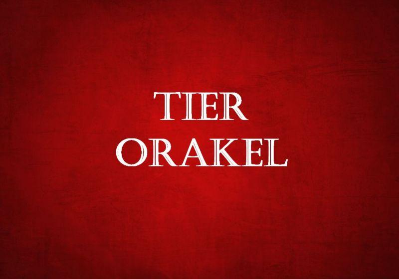 Tafel_rot_tier_orakel