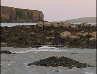 Orkney – Wallpaper – Cliffs and Beach