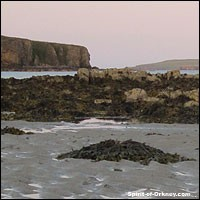 Orkney offers some great scenery... High cliffs and sandy beaches included.