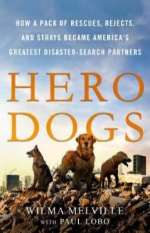 herodogs