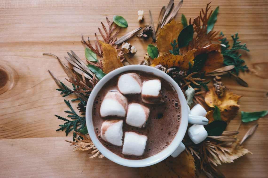 autumn autumn leaf autumn leaves chocolate