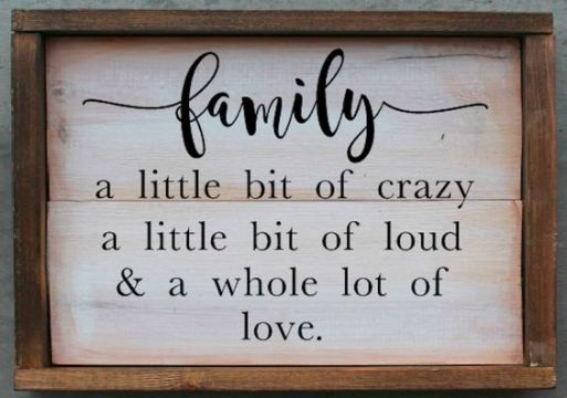 90 Best Family Quotes That Say Family is Forever   Spirit Button family crazy love