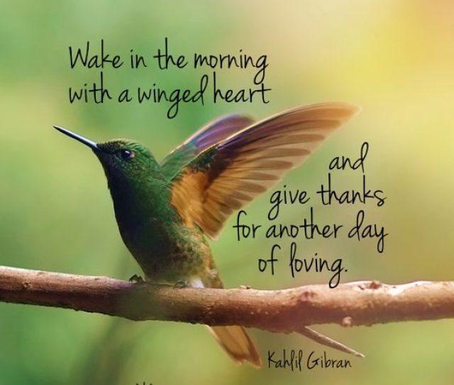 Winged Heart Good Morning