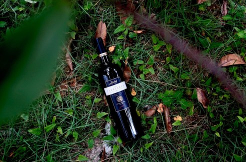 alternative bordeaux blends - babich the patriarch