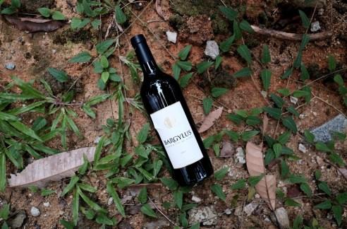 bargylus vin de syrie